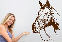 Samolepky na zeď - Kůň 02