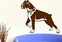 Samolepky na zeď - Pes boxer