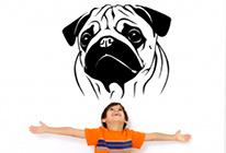 Samolepky na zeď - Pes mops